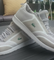 Lacoste cipő 39
