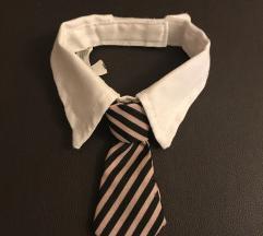 Kutya nyakkendő
