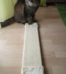 Macska kaparófa (falra rakható)