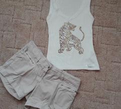 Misso tigris