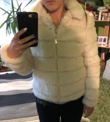 Mayo Chix Biery kabát
