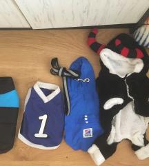 Kiskutya ruhák