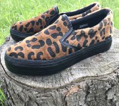 🌸Sinsay cipő (38) 🌸