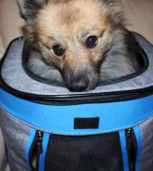 Új kutyahordozó hátizsák 8 kg-ig