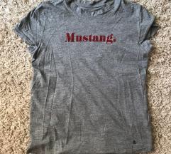 Mustang polo