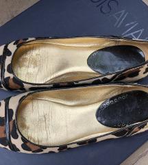 Párducmintás coach cipő