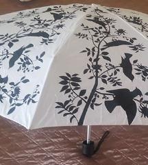 Újszerű édes madárkás esernyő in Belgium