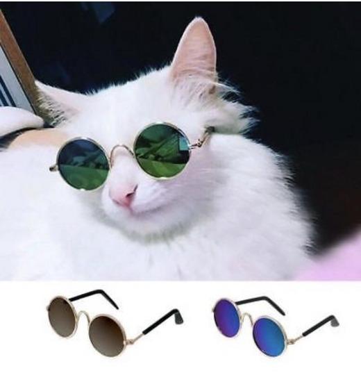 Kisállat napszemüveg