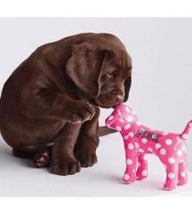 Új bontatlan Victoria's secret kutya